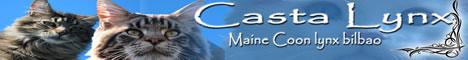 castalynx