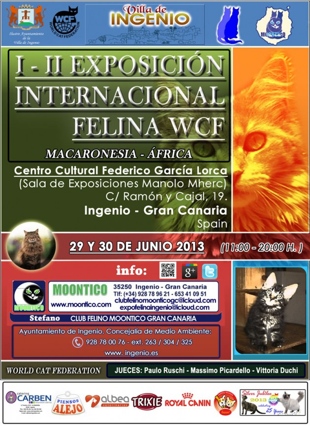 Cartel Expo Felina Gran canaria